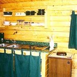 rental cabin mini-kitchen