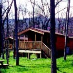 Blue Heron cabin rental