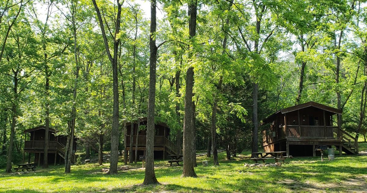 Wood Duck-Blue Heron & Osprey cabins Luray