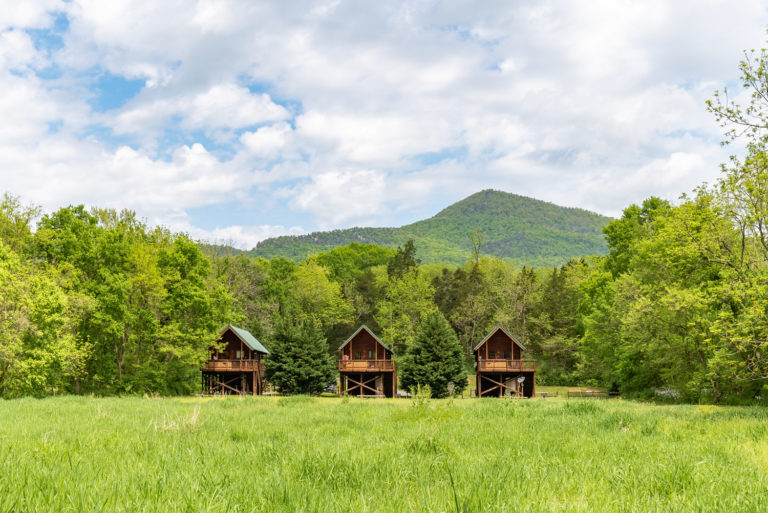 Hook, Line and Sinker cabins near Luray VA